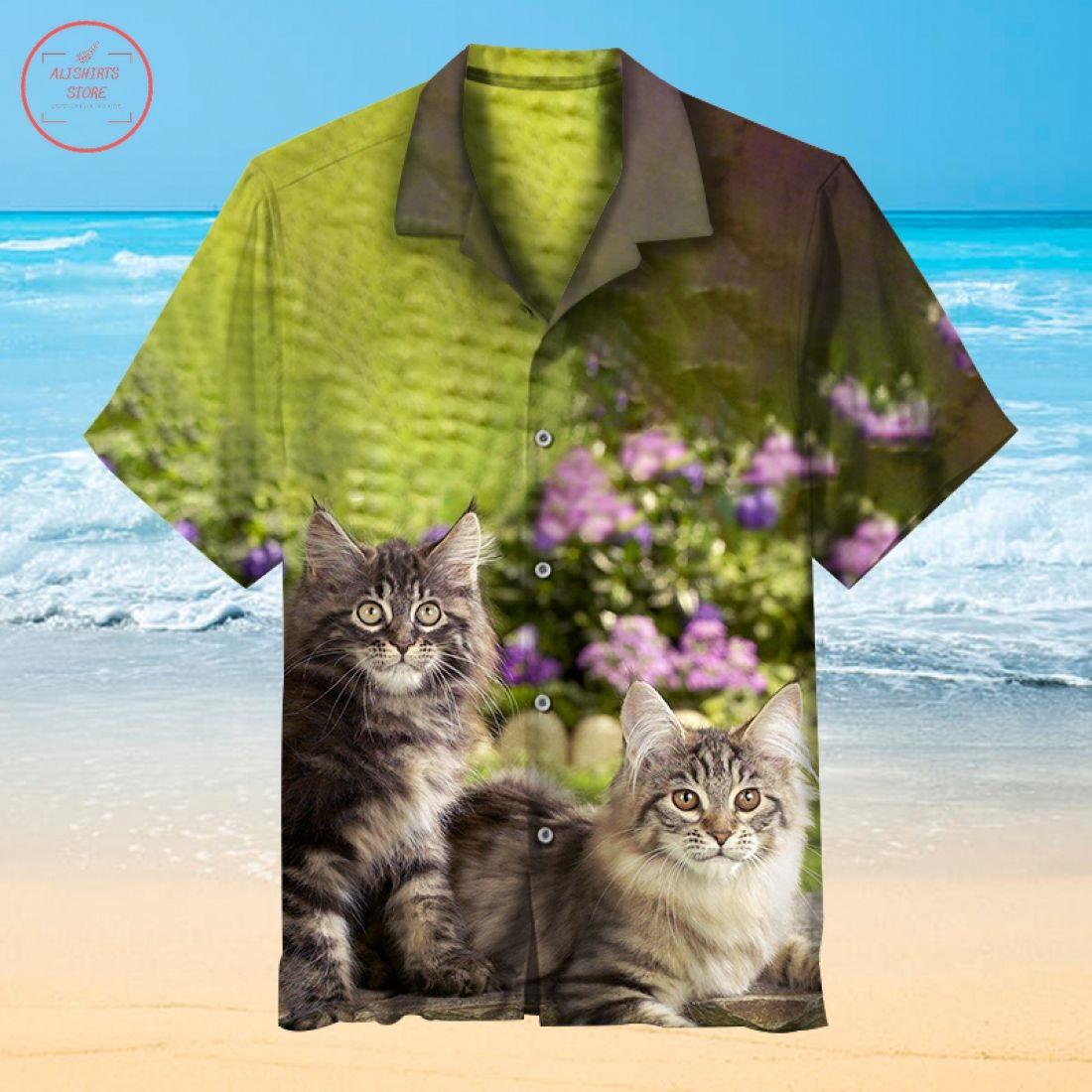 Cute Kitten Hawaiian shirt