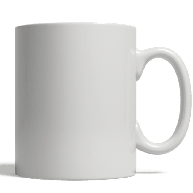 Biden not my president mug