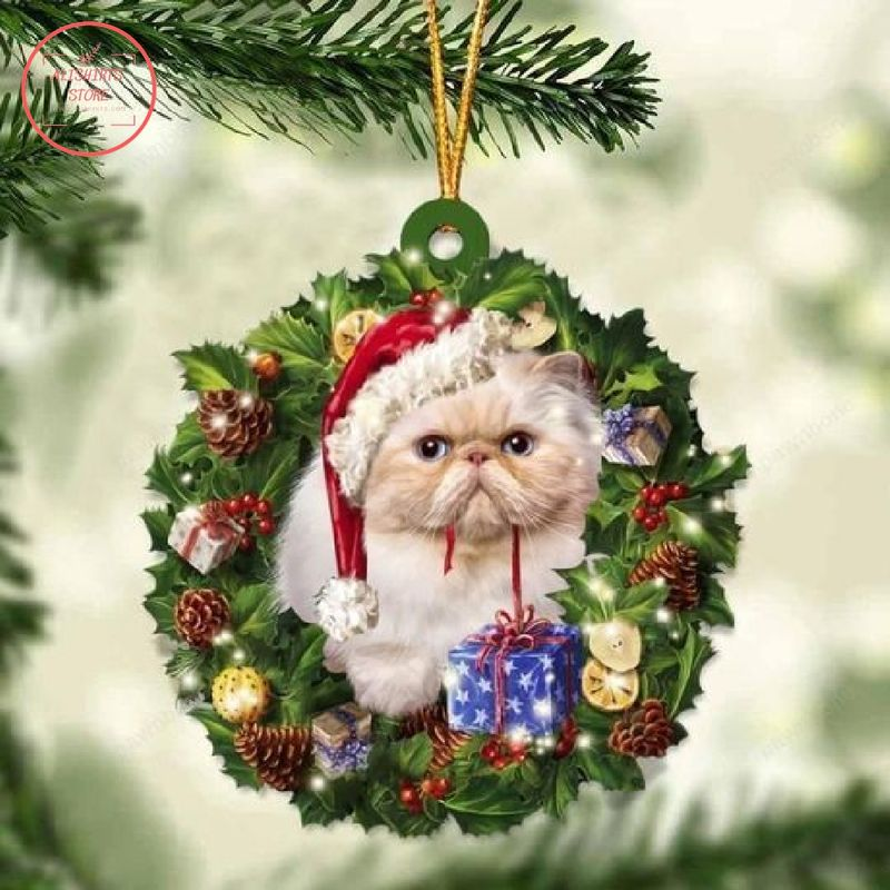 Persian Cat Christmas Gift Acrylic Ornament